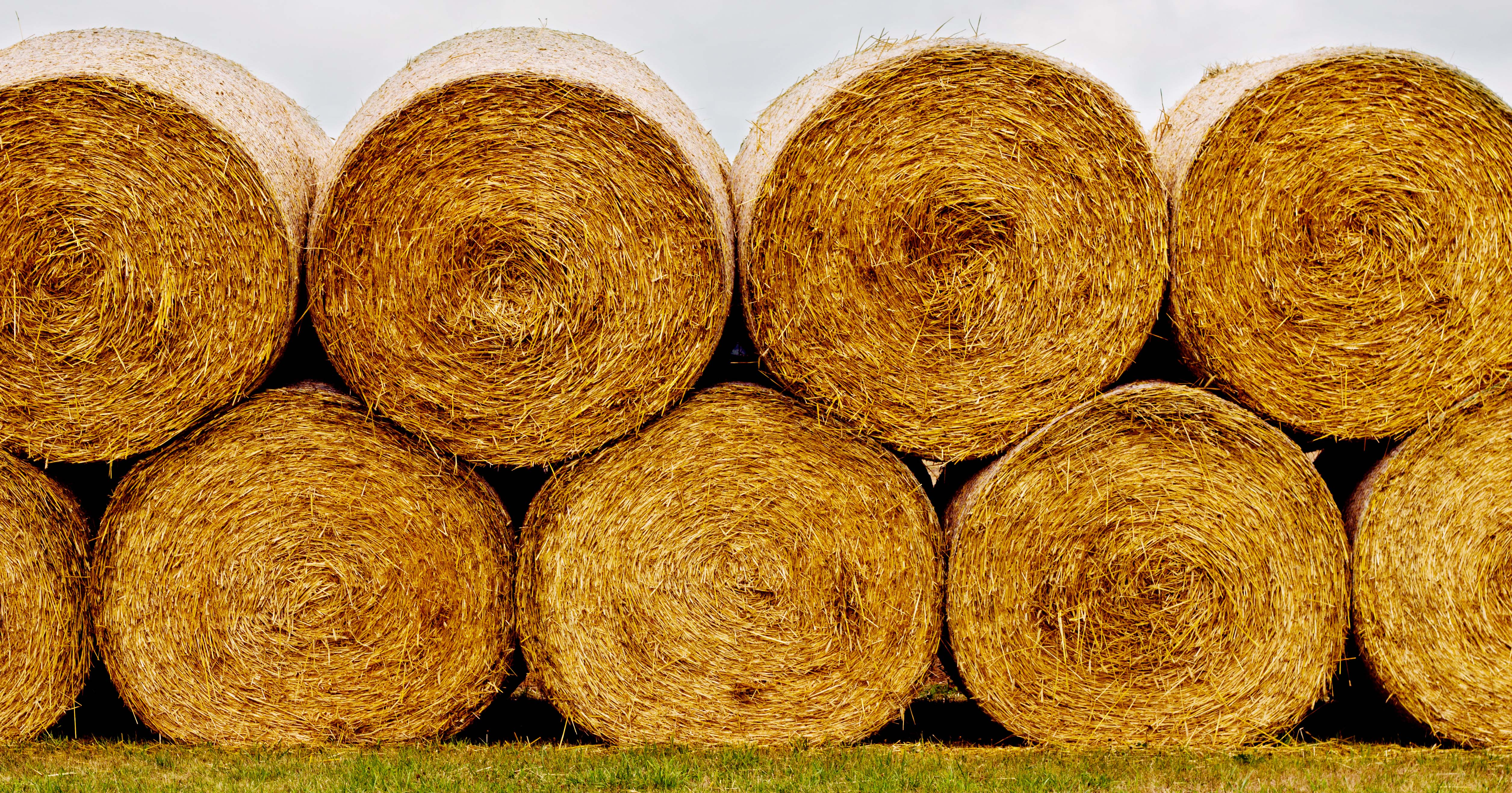 Stacked round hay bales