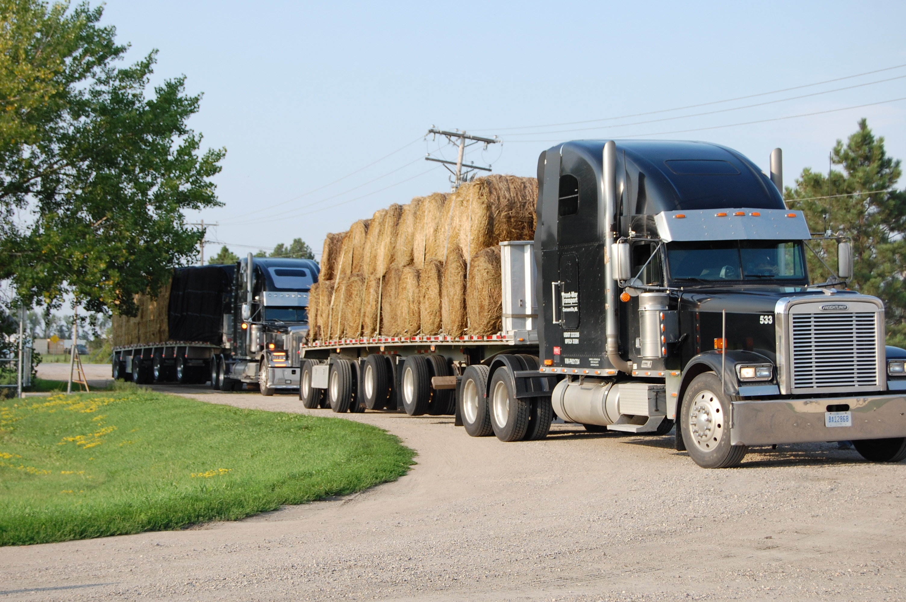 Hay coming into the collection site