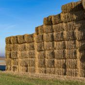 Bales stacked up